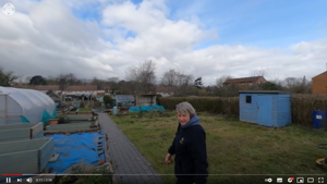 Allotment Blog March 2021